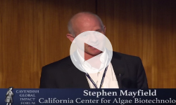 Food and Fuel for the 21st Century—Algae and the Green Revolution 2.0 with Stephen Mayfield