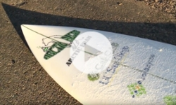 A Growing Passion - Algae Foam Surfboard