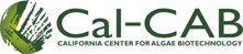 The California Center for Algae Biotechnology (Cal-CAB)